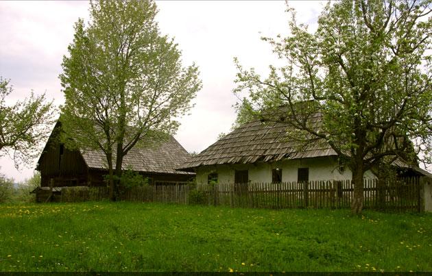 județul Suceava © Saninatul, 2 Mai 2010