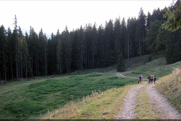 județul Suceava © Lucian SPETCU, 18 Septembrie 2011